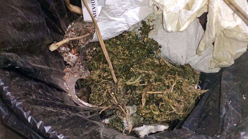 Марихуана незаконное хранение что такое конопля в фотошопе
