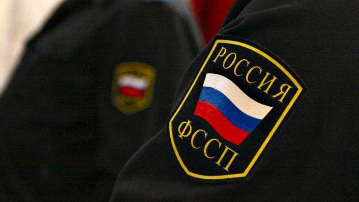 Неменее 300 ставропольцев посетили судебных приставов вединый день приёма жителей